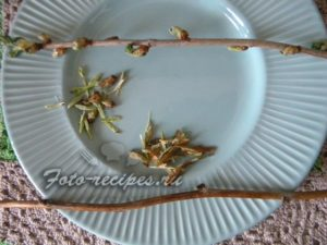 ветка малины для чая