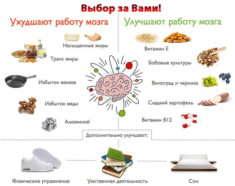 Полезные продукты для головного мозга